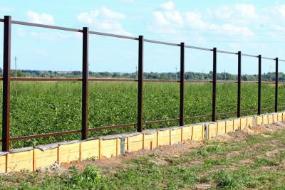 забор 1 сжатый.JPG