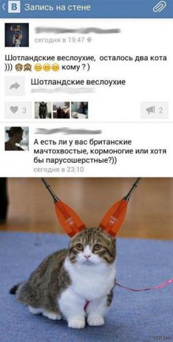 veslo.jpg
