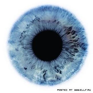 1-глаз.jpg
