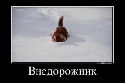 x_6dd6fac6.jpg