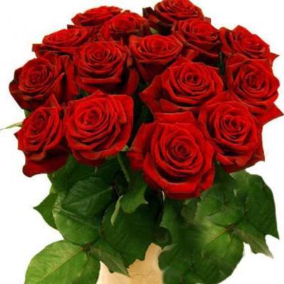 Rозы.jpg