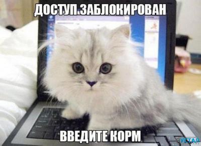 prodolzhenie-vy-najdete-na-nashem-sajte-wwwyaustalcom-9.jpg