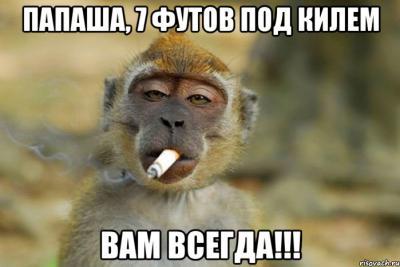 papasha_51469568_orig_.jpeg