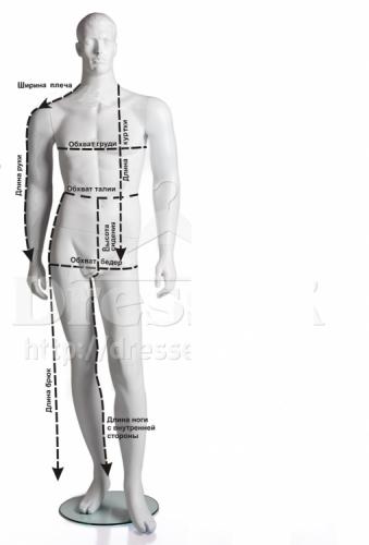 пиктограмма мужчины 2.png