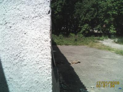 PICT0138.JPG