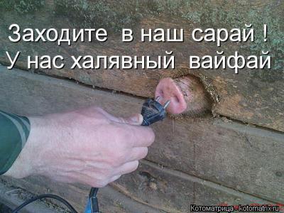 101803661_1358262841_5.jpg