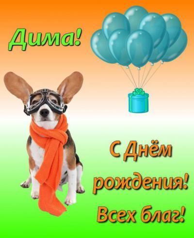 dmitriy0010.jpg