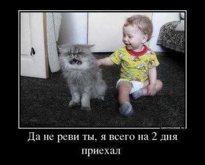 86570149_da-ne-revi-tyi-ya-vsego-na-2-dnya-priehal-.jpg