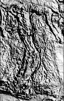 post-18457-0-thumb.jpg