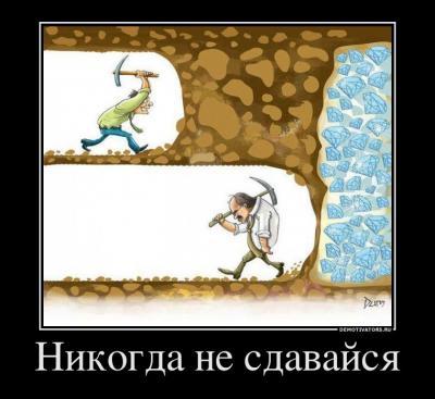 не сдавайся.jpg