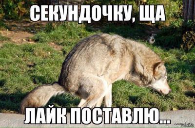 6052-Kogda-tebya-prosyat-postavit-lajk-na-mem-kotoryj-tebe-ne-nravitsya.jpg