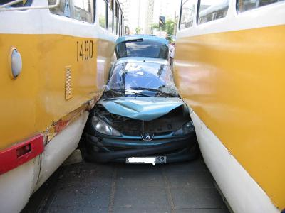 пыжик-и-трамваи.jpg