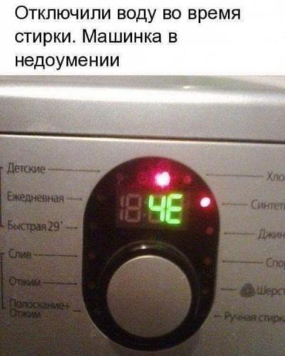 13724308.jpg